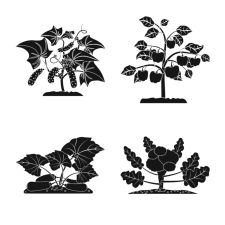 Vector design of greenhouse and plant sign. Set of greenhouse and garden vector icon for stock. Ilustração