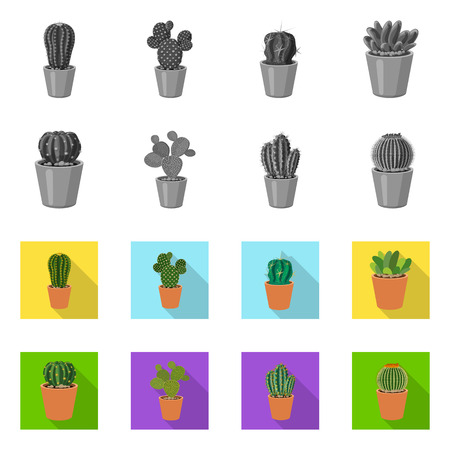 Isolated object of cactus and pot sign. Set of cactus and cacti stock symbol for web. 일러스트