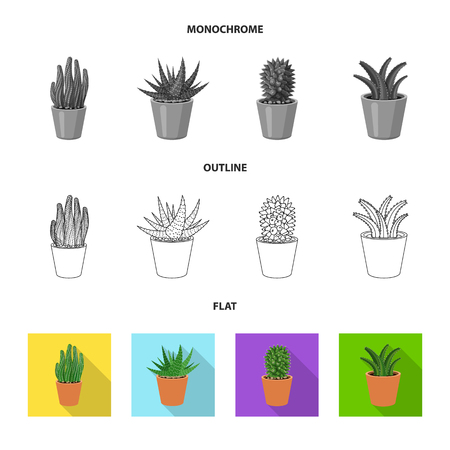 Isolated object of cactus and pot symbol. Collection of cactus and cacti stock symbol for web. Illustration