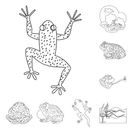 Isolated object of amphibian and animal logo. Collection of amphibian and nature stock vector illustration.