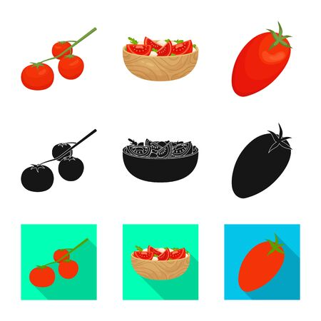 Vector illustration of vegetable and delicious icon. Set of vegetable and natural stock vector illustration.