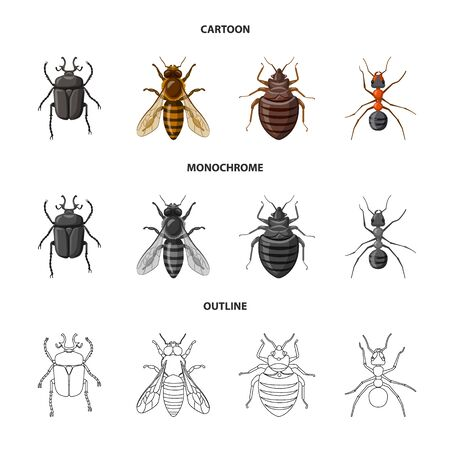 Isolated object of insect and fly icon. Set of insect and element stock vector illustration.