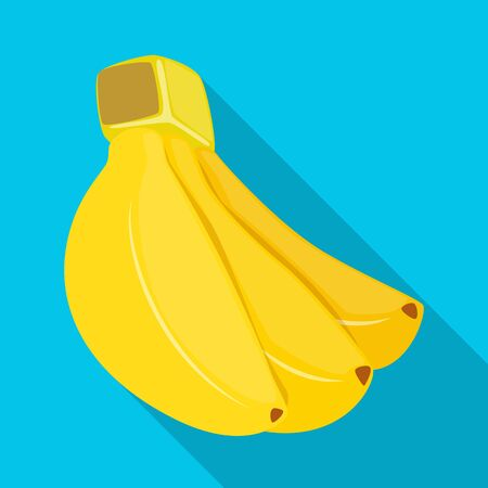Vector design of banana and bunch logo. Collection of banana and fruit stock vector illustration.