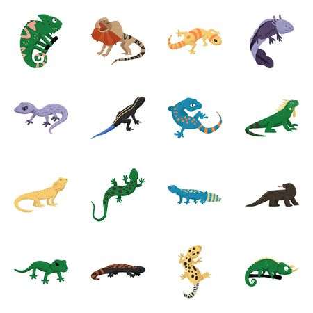 Vector illustration of animal and reptile. Collection of animal and nature stock symbol for web.
