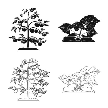 Vector design of greenhouse and plant. Collection of greenhouse and garden stock vector illustration. Ilustracja