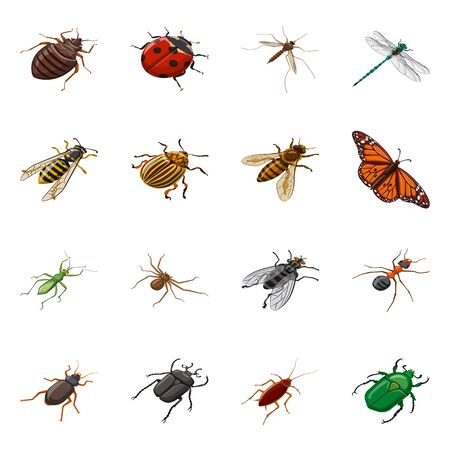 Vector illustration of insect and fly icon. Collection of insect and entomology vector icon for stock.
