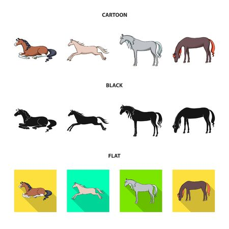 Isolated object of breed and equestrian sign. Set of breed and mare vector icon for stock.