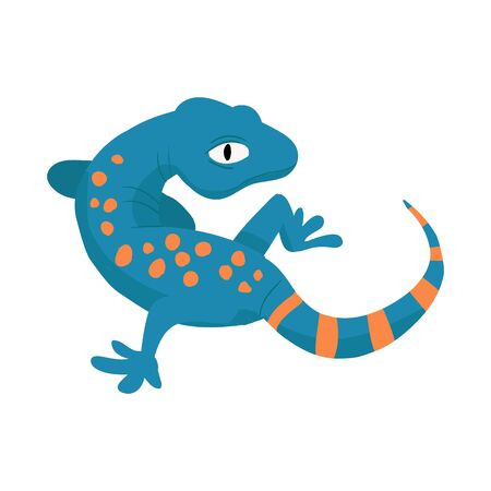 Vector illustration of gecko and lizard. Collection of gecko and cute stock vector illustration.
