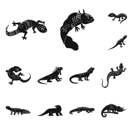 Vector design of zoo and environment icon. Set of zoo and reptile vector icon for stock.