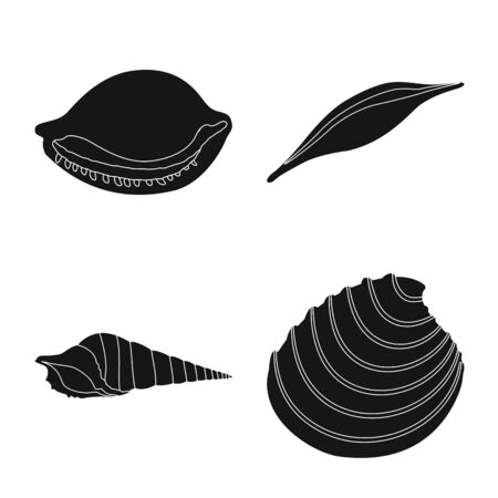 Vector illustration of nature and ocean icon. Set of nature and mollusk stock symbol for web.