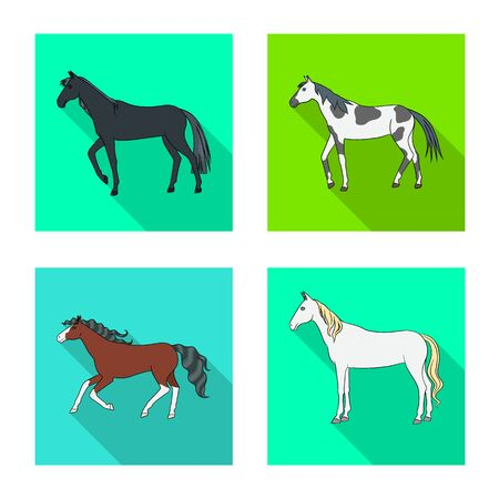Isolated object of breed and equestrian logoCollection of breed and mare stock vector illustration.
