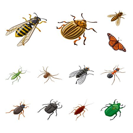 Isolated object of insect and fly sign. Set of insect and entomology vector icon for stock. Ilustracja