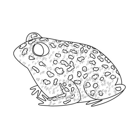 Isolated object of toad and tropical  . Set of toad and points stock symbol for web. Imagens