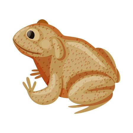 bitmap design of toad and tropical sign. Collection of toad and ecology stock symbol for web.