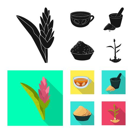 Vector design of fresh and product sign. Set of fresh and asian stock vector illustration. Illustration