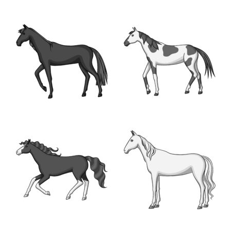 Isolated object of farm and riding symbol. Set of farm and equestrian vector icon for stock.