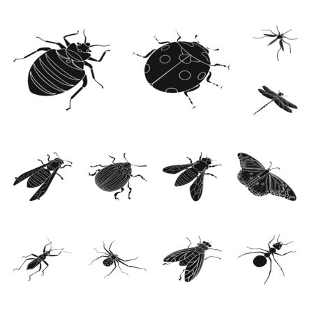 Isolated object of wings and wing . Set of wings and fly stock vector illustration. Ilustracja