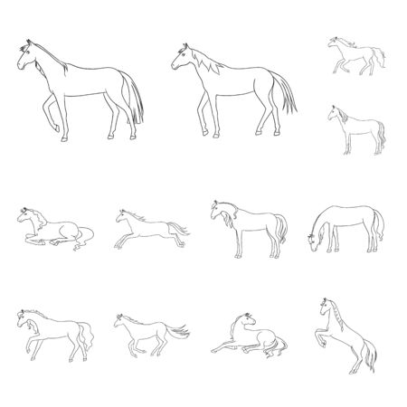 Vector design of stallion and galloping sign. Set of stallion and riding vector icon for stock.