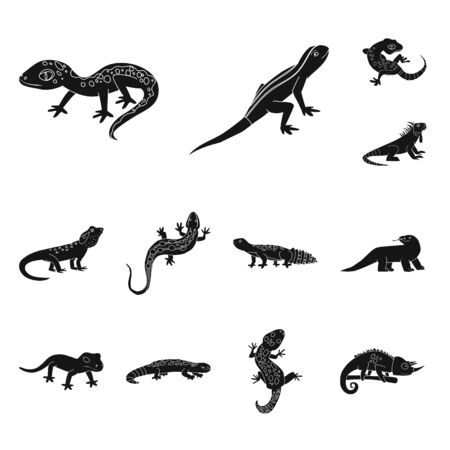 Vector illustration of zoo and environment . Collection of zoo and reptile vector icon for stock.