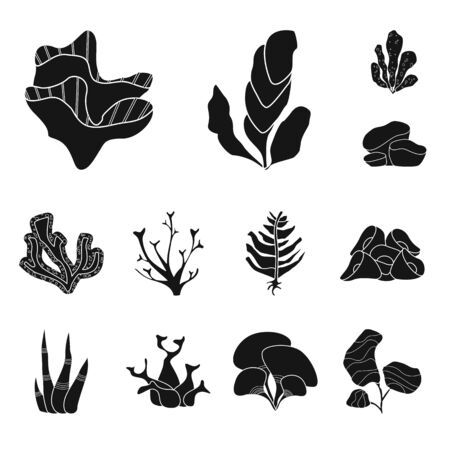 Isolated object of decoration and wildlife symbol. Collection of decoration and aquarium vector icon for stock.