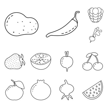 Vector illustration of healthy and ripe sign. Collection of healthy and harvest stock vector illustration.
