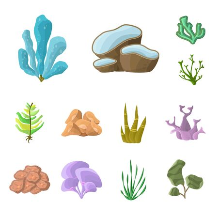 Vector illustration of underwater and aquarium  . Set of underwater and ocean stock vector illustration.