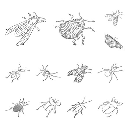 Vector illustration of fauna and entomology symbol. Collection of fauna and animal stock vector illustration.