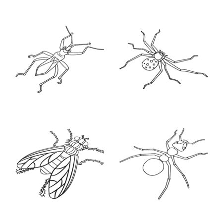 Isolated object of fauna and entomology logo. Collection of fauna and animal vector icon for stock.