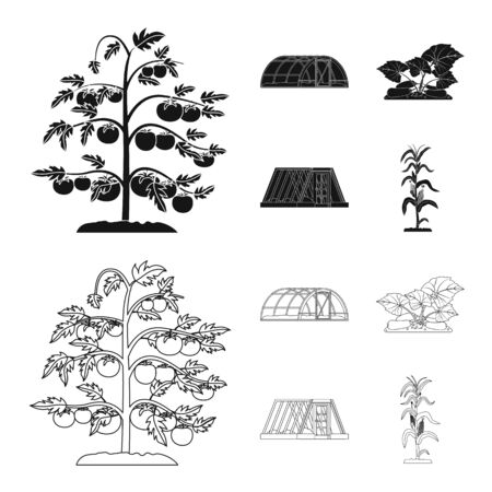 Vector illustration of greenhouse and plant icon. Collection of greenhouse and garden vector icon for stock.