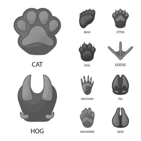 Disegno vettoriale dell'icona della fauna selvatica e della traccia. Set di fauna selvatica e icona di vettore a piedi per stock. Vettoriali