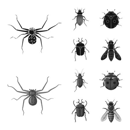 Vector illustration of insect and fly sign. Set of insect and element stock symbol for web.