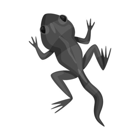 Isolated object of toad and green symbol. Collection of toad and toxic stock bitmap illustration.
