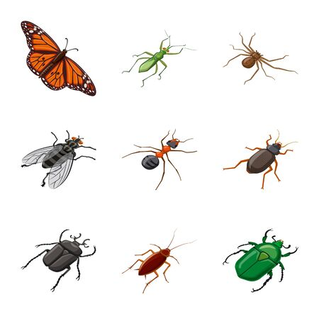 Isolated object of insect and fly logo. Set of insect and entomology stock symbol for web.