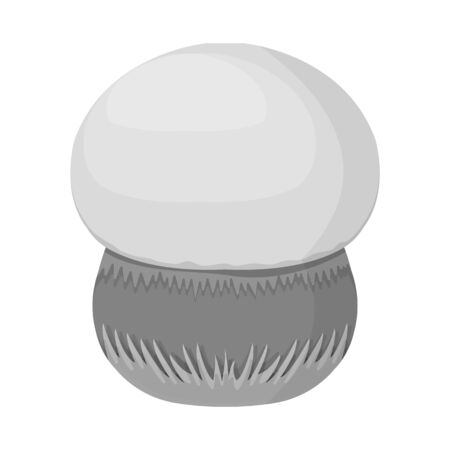 Vector design of mushroom and boletus icon. Collection of mushroom and organic vector icon for stock. 向量圖像