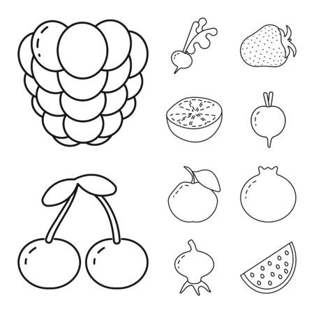 Vector design of healthy and ripe. Set of healthy and harvest vector icon for stock.
