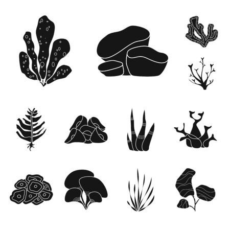 Vector design of decoration and wildlife. Collection of decoration and aquarium stock symbol for web.