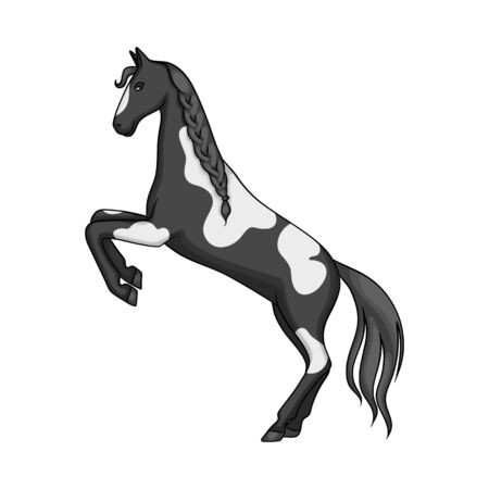 Vector design of horse and wild. Collection of horse and ranch stock vector illustration.