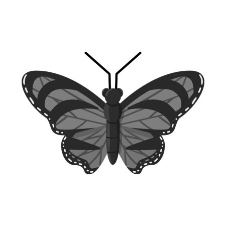 Vector illustration of butterfly and beauty symbol. Set of butterfly and wildlife stock vector illustration. Ilustracja