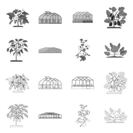Illustrazione vettoriale di serra e simbolo della pianta. Set di serra e giardino simbolo azionario per il web.