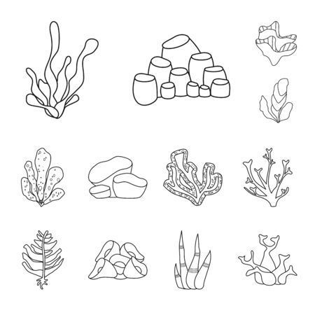 Vector design of sea and ocean sign. Collection of sea and flora stock vector illustration.
