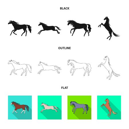 Isolated object of breed and equestrian icon. Set of breed and mare stock vector illustration. Illustration
