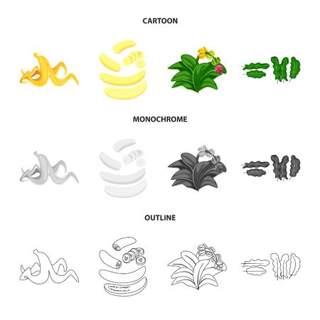 Isolated object of natural and vegetarian symbol. Set of natural and eating vector icon for stock. Stok Fotoğraf - 128647561