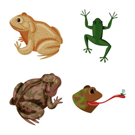 Isolated object of frog and anuran logo. Set of frog and animal stock vector illustration.