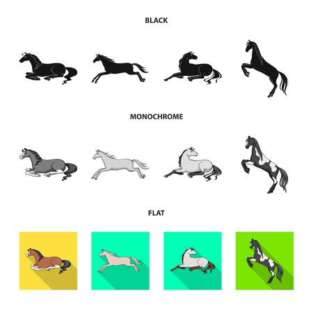 Vector illustration of breed and equestrian. Set of breed and mare stock symbol for web. Illustration