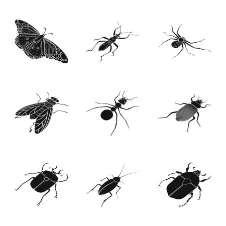 Vector illustration of wings and wing icon. Collection of wings and fly vector icon for stock.