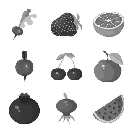 Illustrazione vettoriale di simbolo naturale e raccolto. Insieme di simbolo di borsa naturale e rosso per il web.