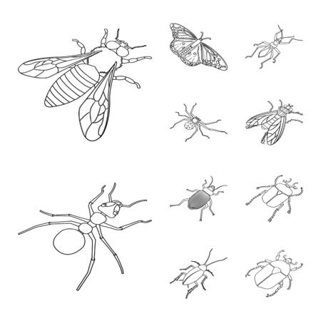 Vector design of fauna and entomology logo. Collection of fauna and animal stock vector illustration.