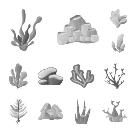 Vector design of botanical and flora icon. Collection of botanical and nature stock symbol for web.