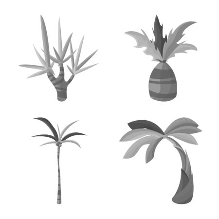 Vector design of jungle and botanical icon. Set of jungle and flora stock vector illustration.