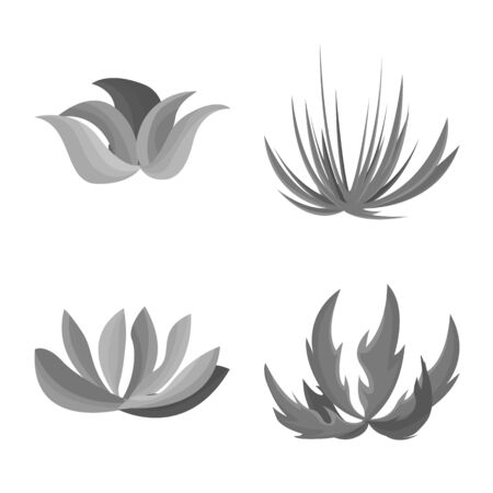 Isolated object of foliage and floral sign. Collection of foliage and summer vector icon for stock.